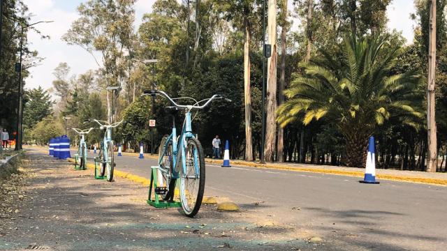 biciE_4.jpg